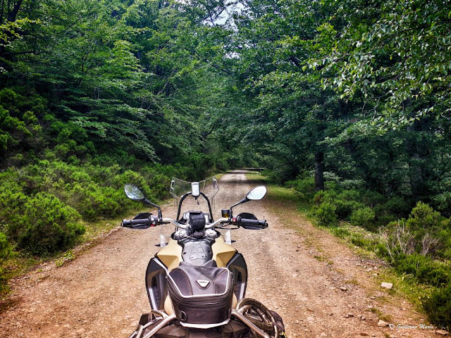 BMW F800GS: Trail Forever. Leon, Entre las nubes: Trail Leonés (o una de Romanos)