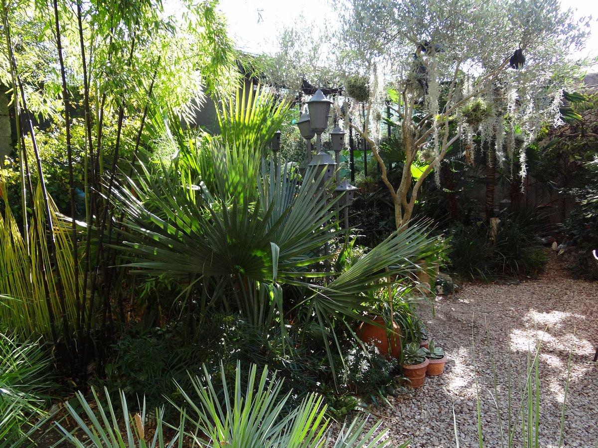 Jardin de b signoles un dimanche d 39 octobre au jardin for Jardin octobre