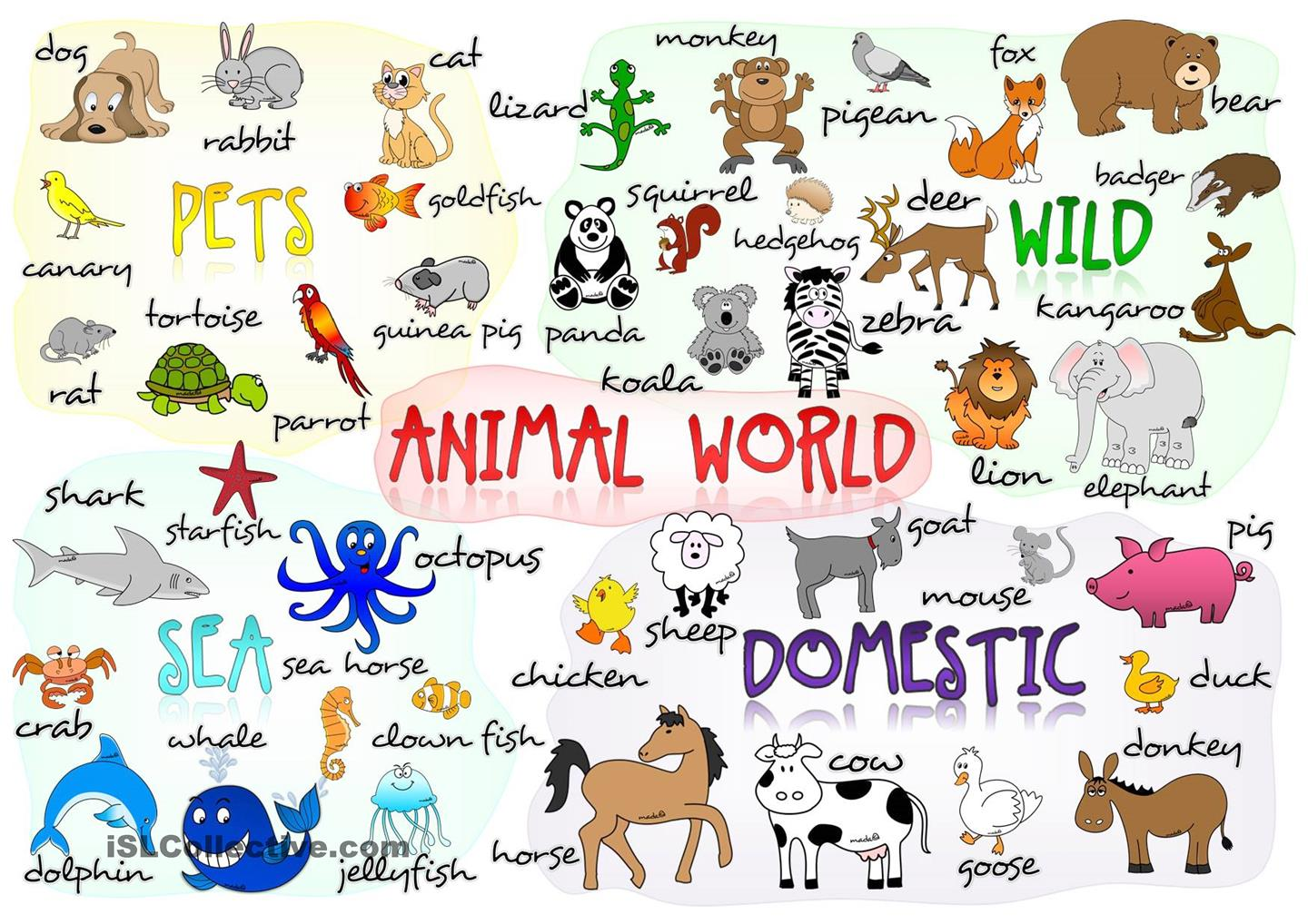 Bargas School Animals In The World