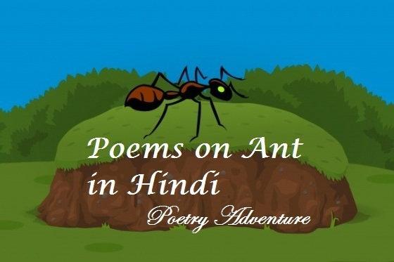Poem on Ant in Hindi, Cheeti Par Kavita, Hindi Poem on Ant, चींटी रानी पर कविता