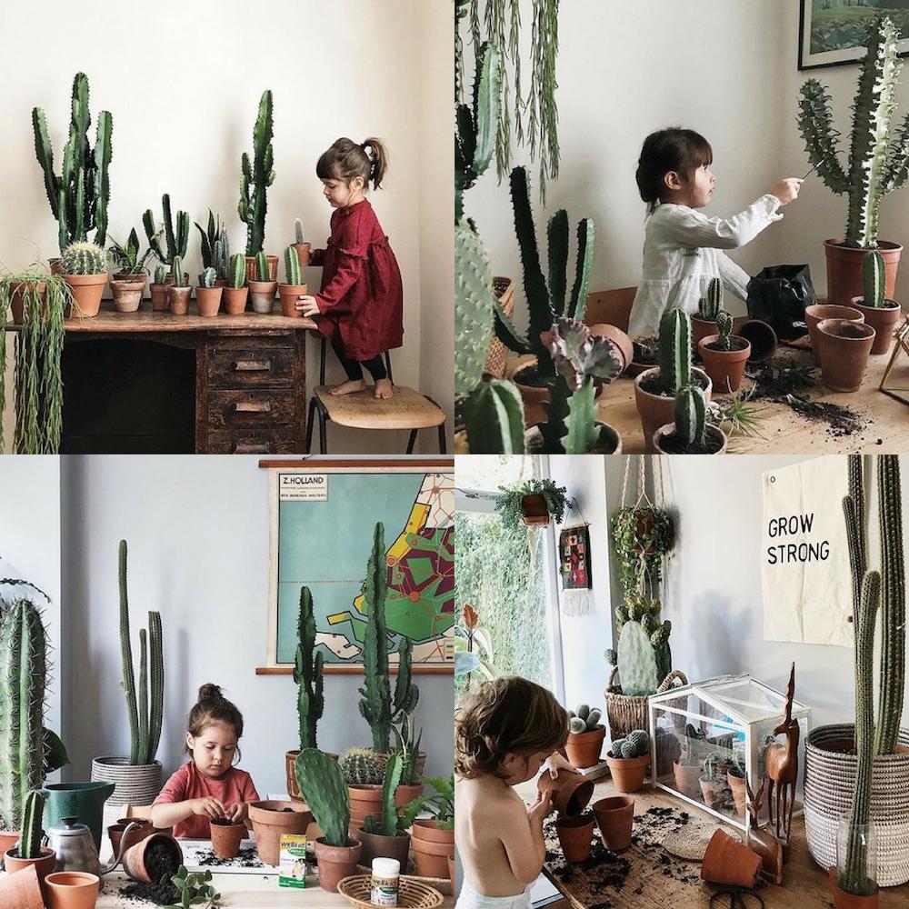 Niños con macetas, tierra y cactus