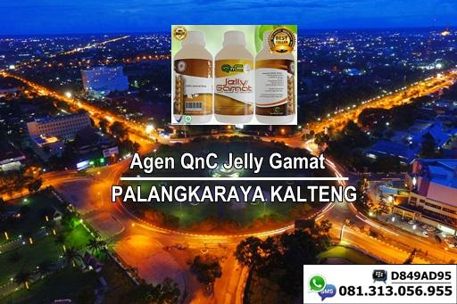 Agen QnC Jelly Gamat Resmi Di Kota Palangkaraya , Kalimantan Tengah