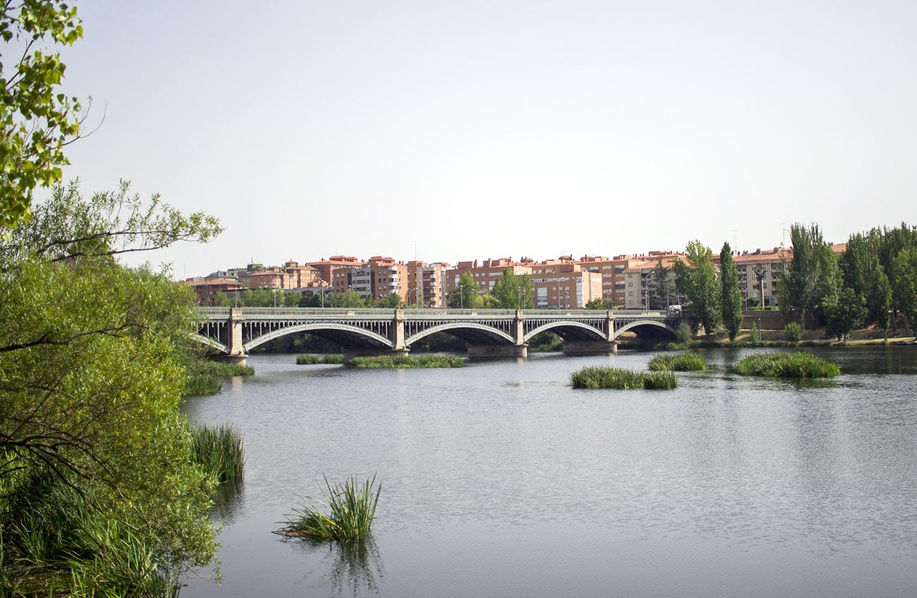 puente enrique estevan Salamanca