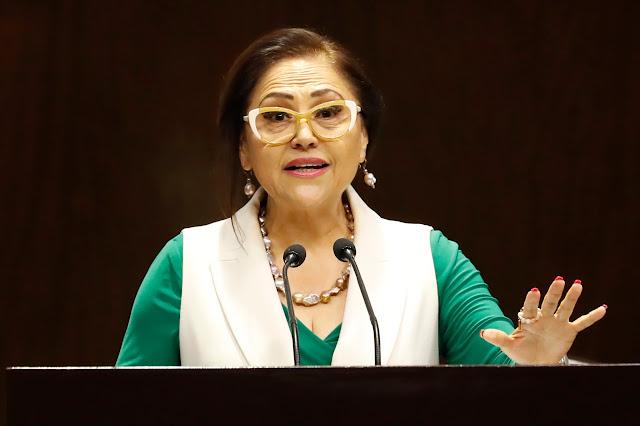 Pide Silvia Garza a la Profepa investigar la presunta caza de un bisonte americano en Coahuila