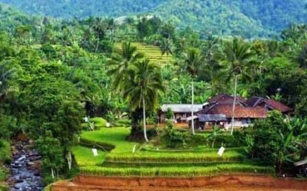 Pengertian Desa dan Struktur Ruang Desa