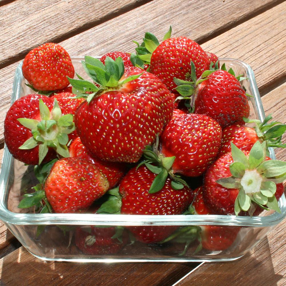 så jordbær