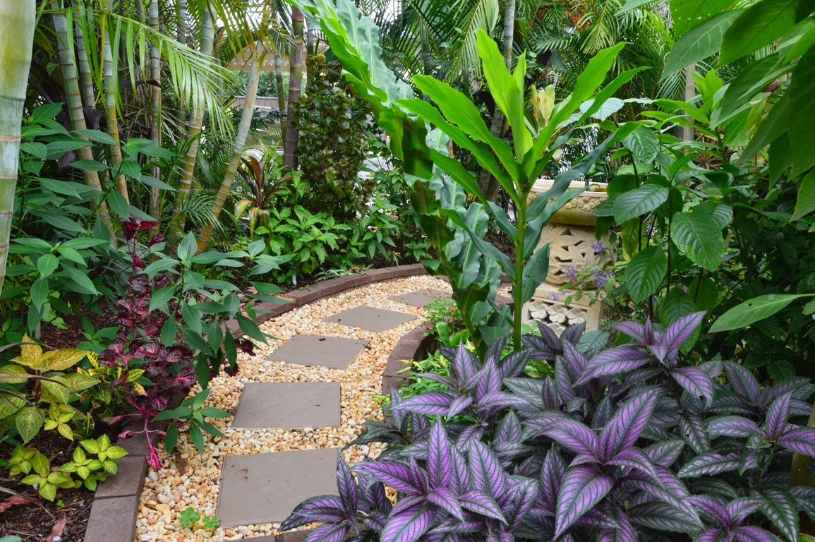 Tropical Breeze is a Sydney tropical garden filled with a ...