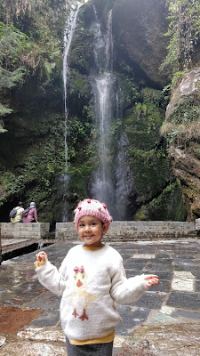 My Tirthan Valley Diaries - 2021