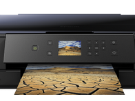 Download Epson XP‑900 Drivers for Mac & Windows