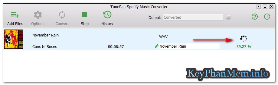 Hướng dẫn tải nhạc ở Spotify mới nhất