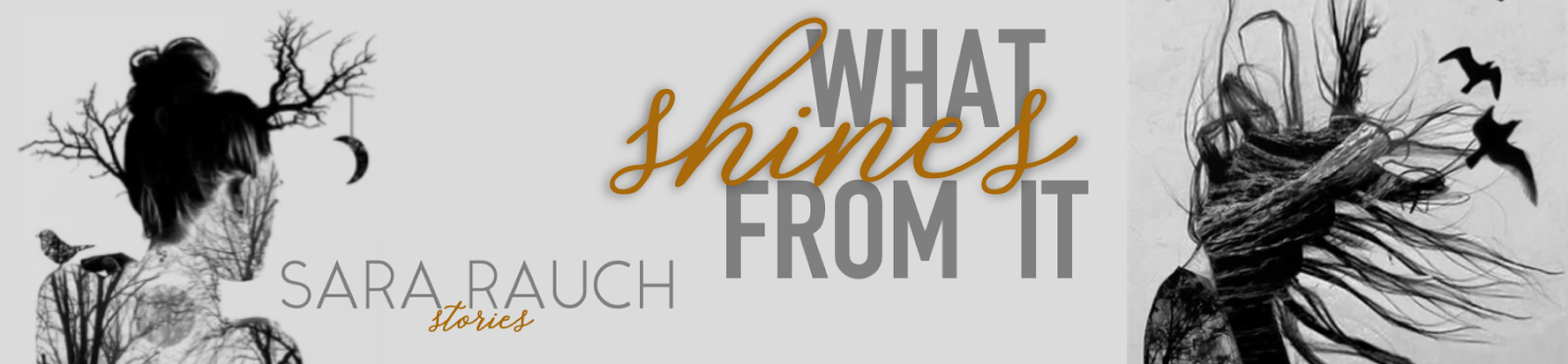 What Shines from It header banner
