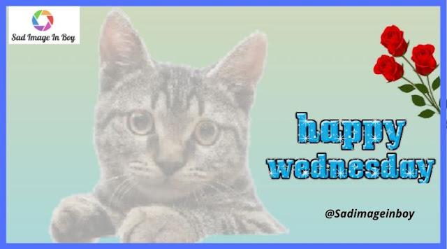 Happy Wednesday images | happy wednesday, images of happy wednesday, happy wednesday pictures images photos