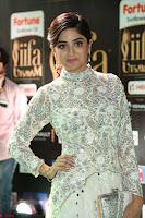 Poonam Kaur in Beautiful Floor Length Gown at IIFA Utsavam Awards 2017  Day 2  Exclusive 12.JPG