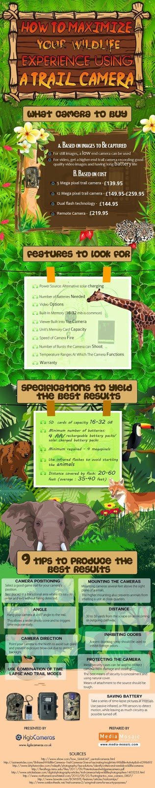 Infographic : How To Maximize Your Wildlife Experience Using A Trail Camera