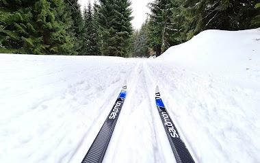 Zakochaj się w biegówkach! Jak spróbować narciarstwa biegowego.