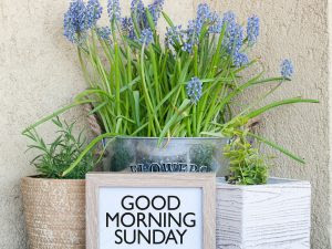 happy good morning sunday images free download