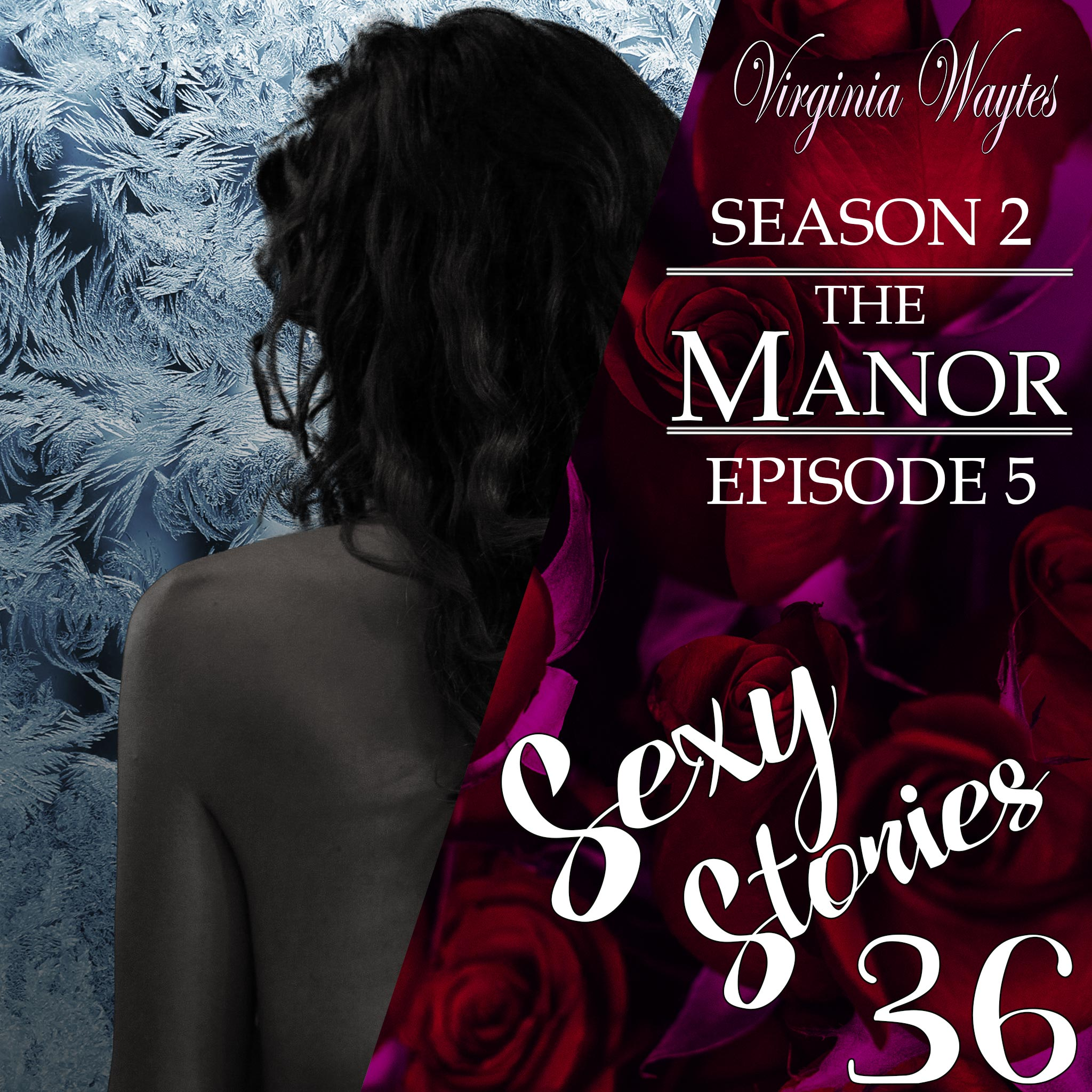 Sexy Stories 36 - Transcript