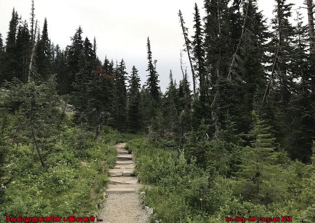 Mount Rainier Wonderland Trail