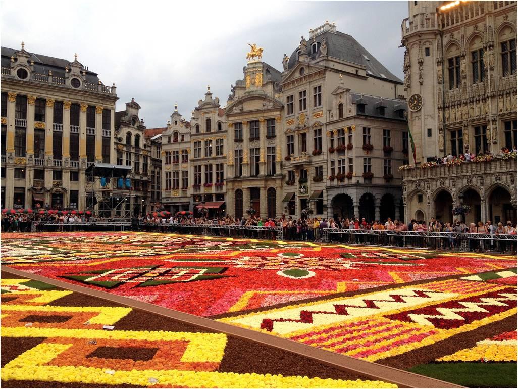 Brussels Flower Carpet 2012 ~ Kuriositas
