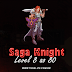 Saga Knight: Level 8 ao 80