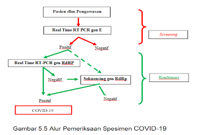 alur pemeriksaan spesimen covid-19