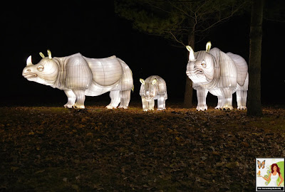 Illuminated Rhinocerus Bronx Zoo Holiday of Lights 2019