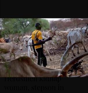 Herdsmen kidnap woman, stepson in Ondo, demand 10m ransom