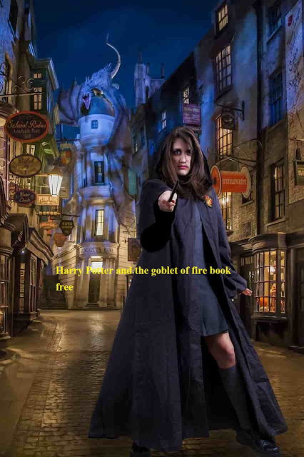 harry potter and the goblet of fire book free  pdf download