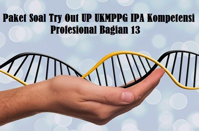 Paket Soal Try Out UP UKMPPG IPA Kompetensi Profesional Bag. 13