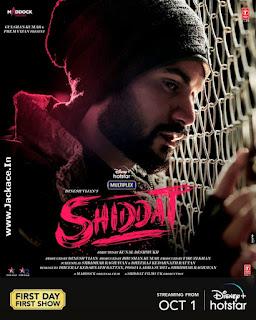 Shiddat: Journey Beyond Love Poster 11