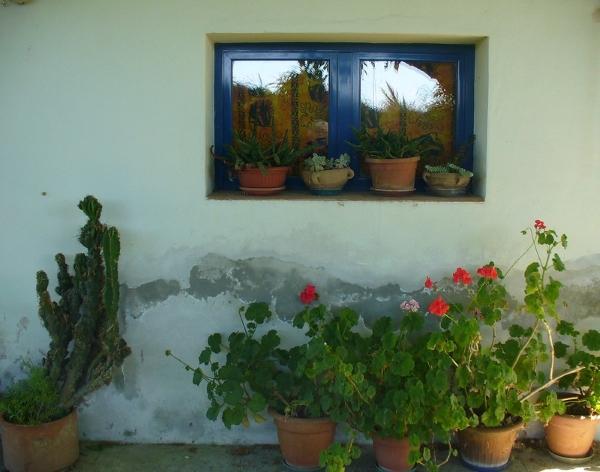 muro-umidità-infiltrazione-intonaco