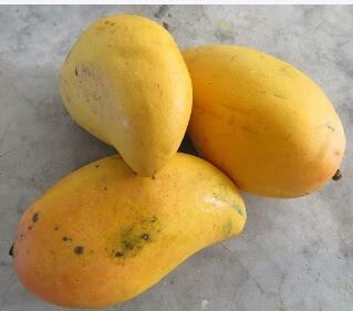 Superb Health Benefits Of Mango