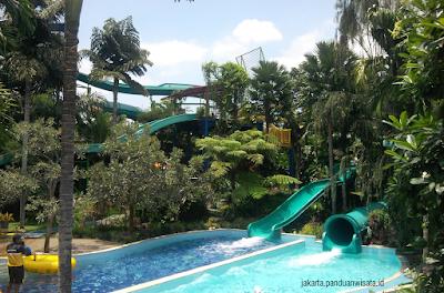 The Jungle Bogor Jakarta