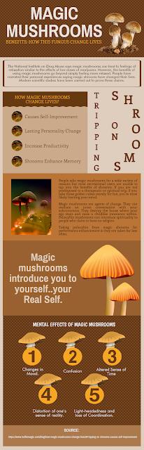 How Magic Mushrooms Changes Lives?