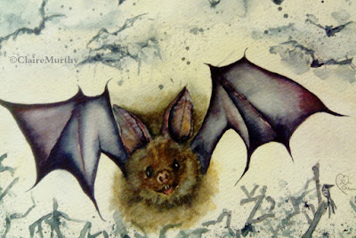 Wildlife watercolour illustration of a bat.