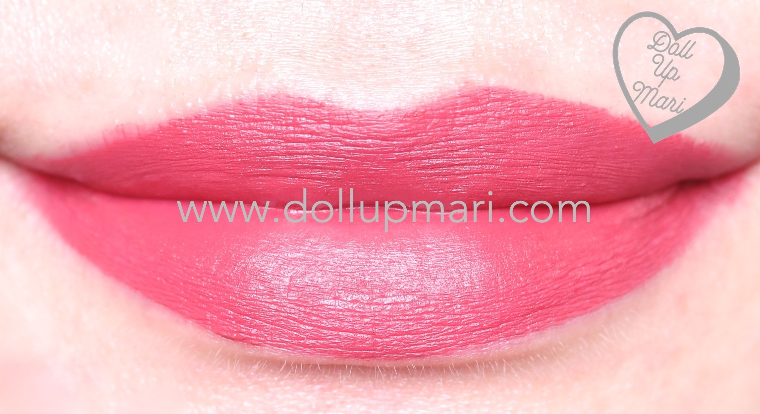 lip swatch of SilkyGirl Matte Junkie Lipcolor (08 Artsy)