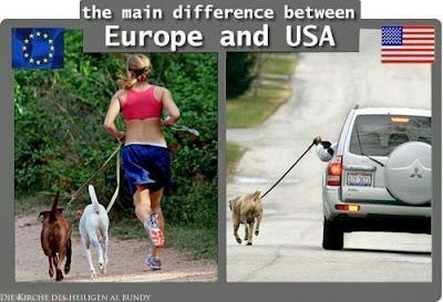 Lustiges Vergleichsbild mit Hund gassi gehen - Europa USA - Spaßbilder