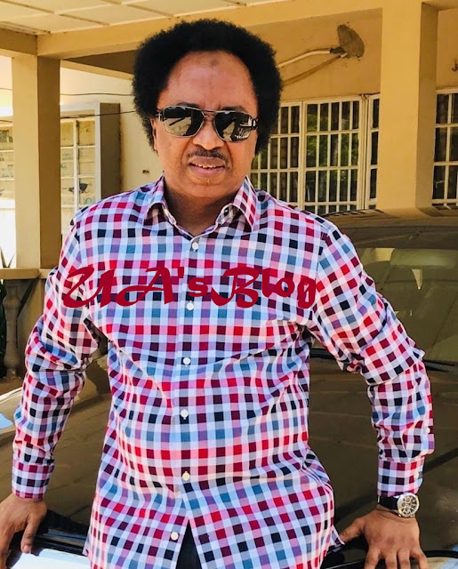 Shehu Sani's Cracked Mirror, By Philip Agbese