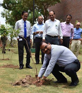 Cadila Pharmaceuticals planted 2000 saplings to celebrate 'World Environment Day'