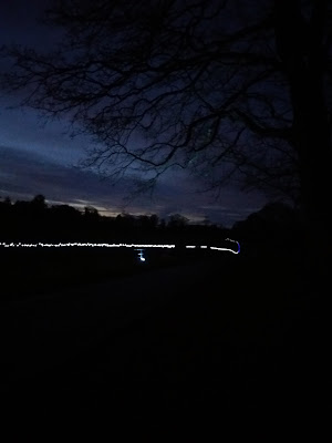 the driveway with fairy lights - growourown.blogspot.com ~ ecotherapy blog