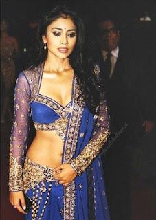 shriya saran sexy cleavage
