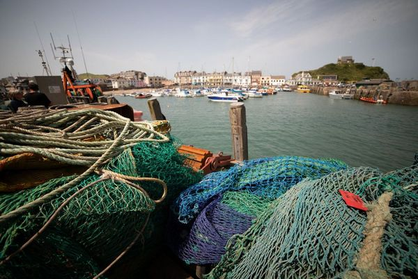 Ilfracombe Harbour fishing - Photo copyright Nina Constable Media (All Rights Reserved)