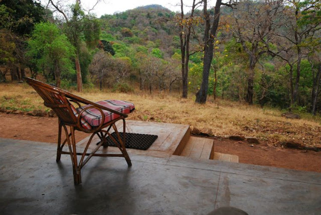 wildlife campsites india