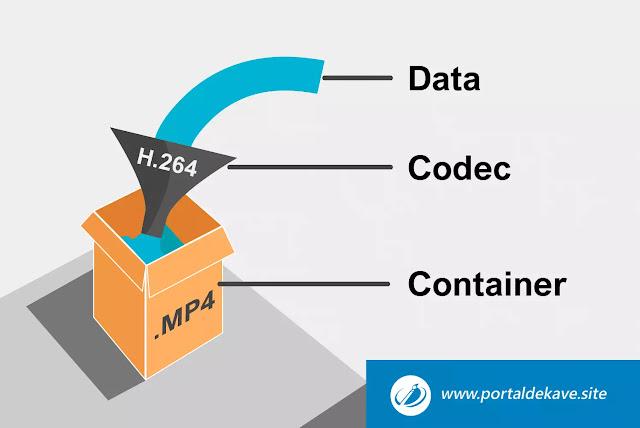 Pemahaman dan Perbedaan Container dengan CODEC dalam Format Video
