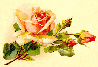 rose flower artwork image digital clipart download