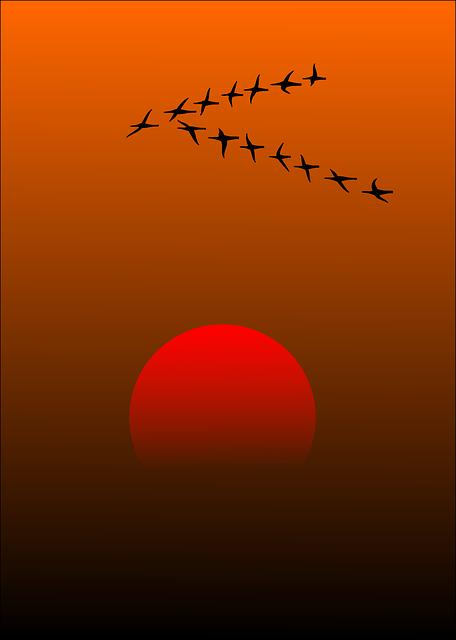 Ilustrasi matahari terbit dari tempat tenggelamnya