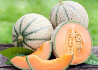 Waspadai Ancaman Bakteri Listeria pada Buah Melon Australia