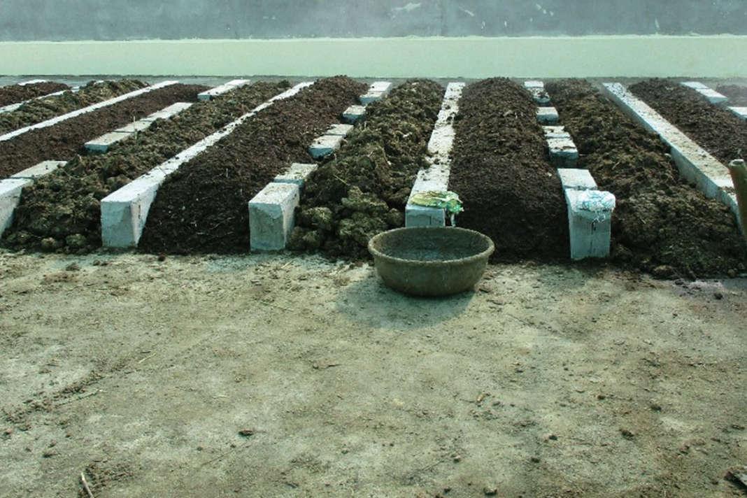 ખેતીમાં વધારે નફો મેળવવાના ઉપાયો
