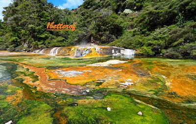 Traveling Rotorua