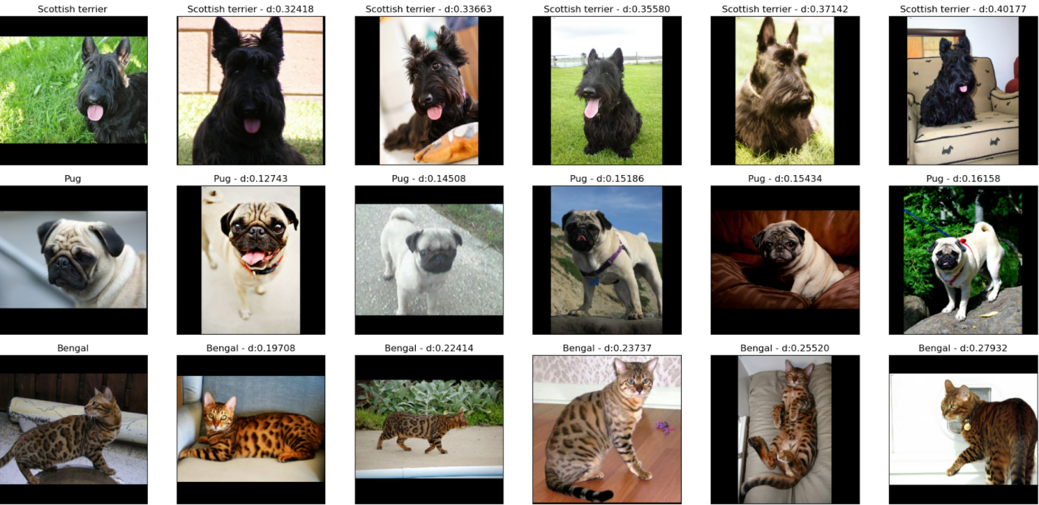 Examples of nearest neighbor searches performed on the embeddings generated by a similarity model trained on the Oxford IIIT Pet Dataset